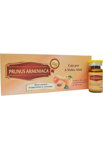 Vitamina B17, (amigdalina) Inyectable, Caja X 6 Viales